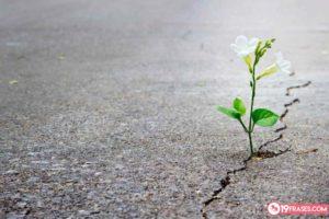 19 Frase de esperanza para motivar y animar a cualquiera