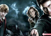 19 Frases de Harry Potter que los muggles no entenderán