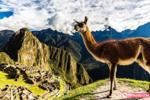 19 Frases peruanas más populares y su significado