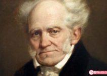 19 Frases de Arthur Schopenhauer Fantásticas que debes leer