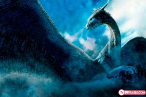 Frases de Eragon