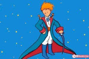 19 Frases de El Principito, un cuento infantil con sabías enseñanzas